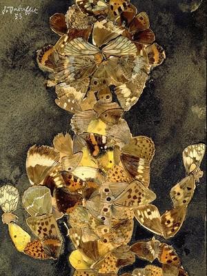 Dubuffet Butterfly